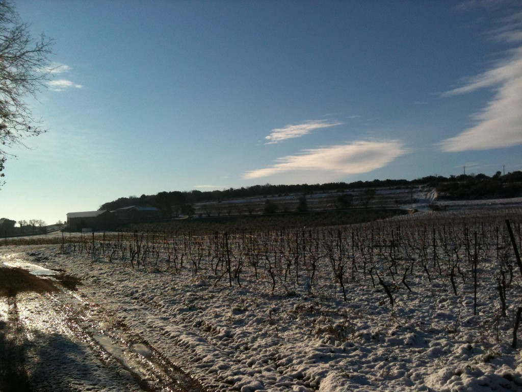 hivers-domaine-daurion-neige